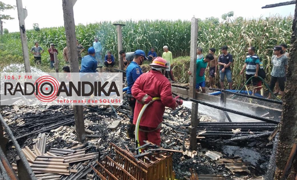 kebakaran_Kandang.jpg