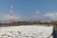 Musim Kemarau, Produksi Garam Di Probolinggo Meningkat Dua Kali Lipat