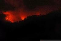 BPBD Jember Bantu Padamkan Kebakaran Di Argopuro
