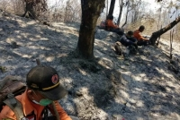 Tim Penanganan Karhutla Terjebak Kebakaran Di Gunung Argopuro